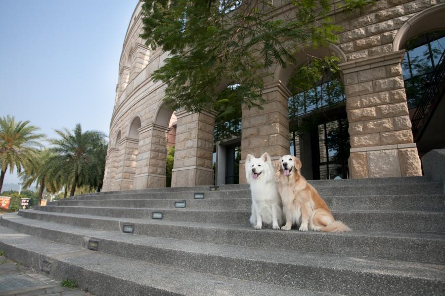 亞洲大學 (三)