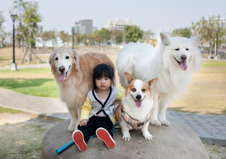 首爾生態公園